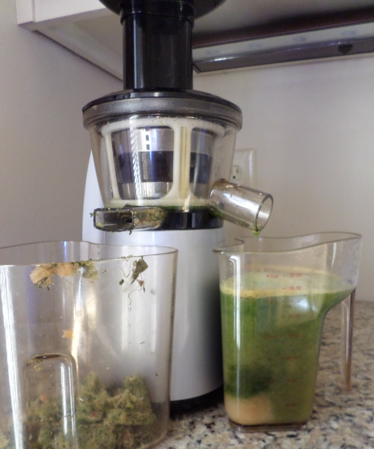Slow Juicer Benefits : Health Benefits of Juicing for Your Eyes