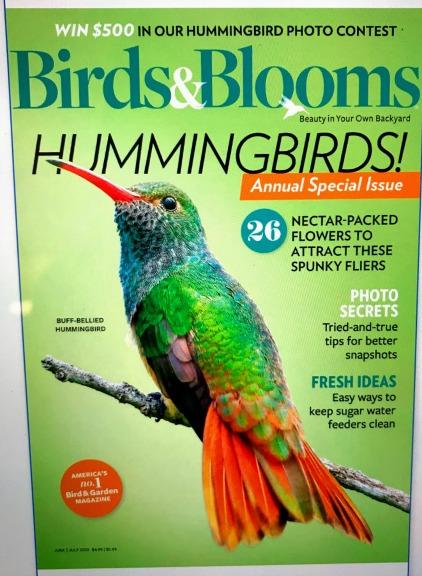 large print magazines