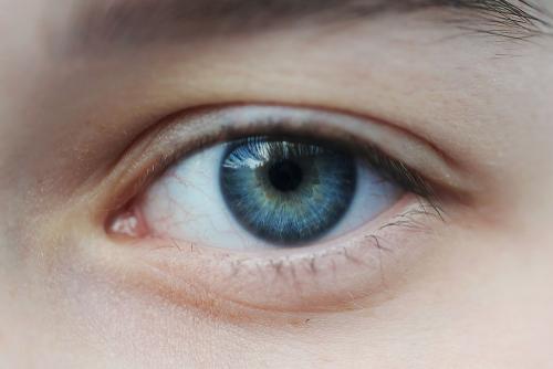 macular pigment density