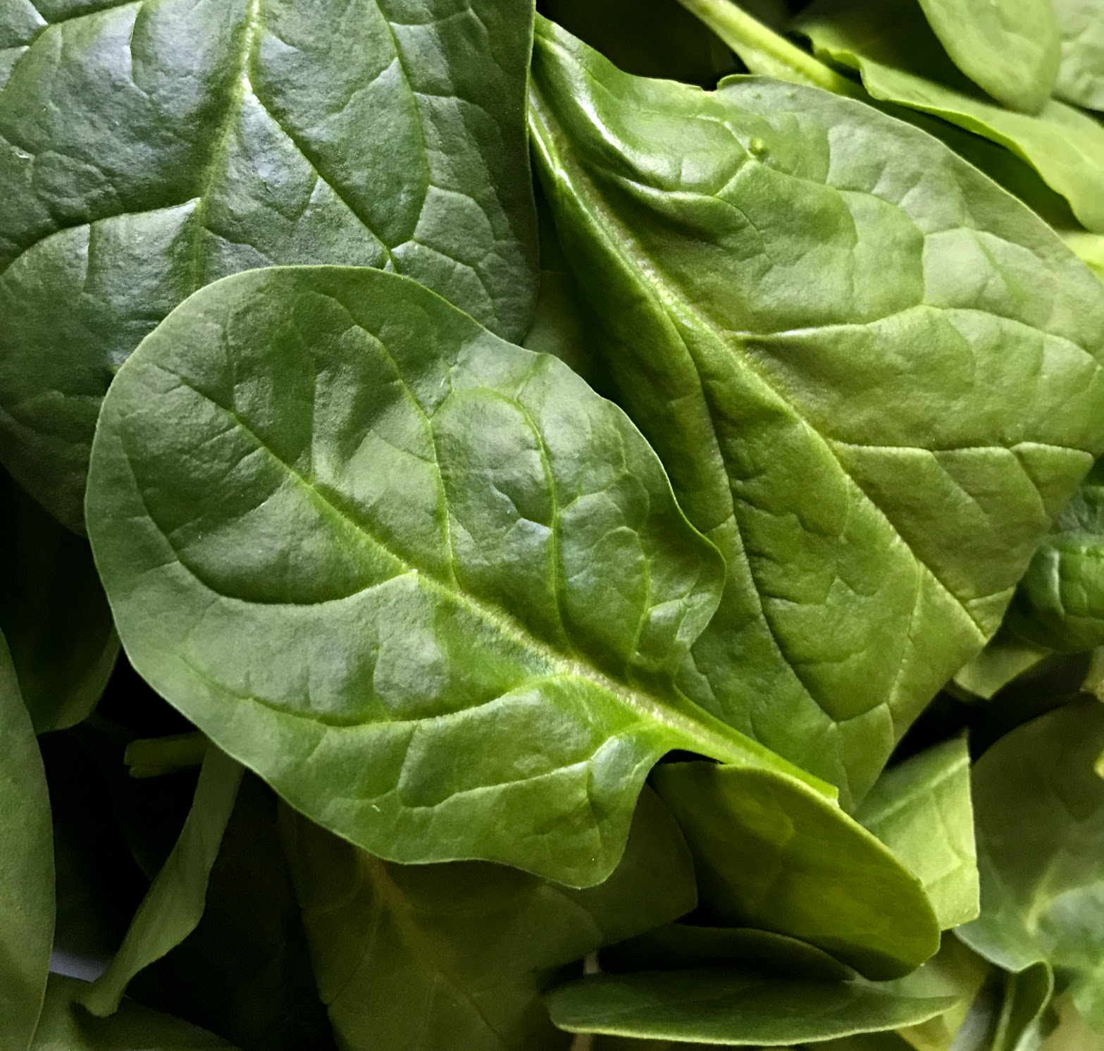 health benefits of spinach for your eyes