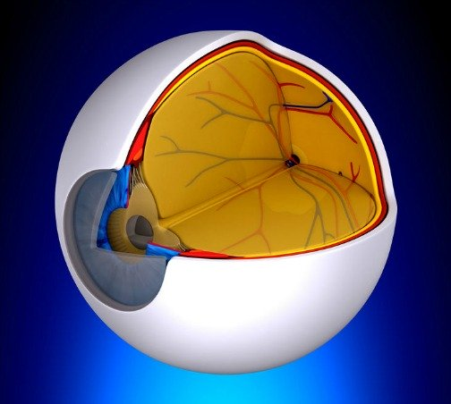 dry macular degeneration treatment breakthroughs