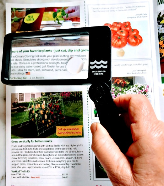 hand held magnifier with light
