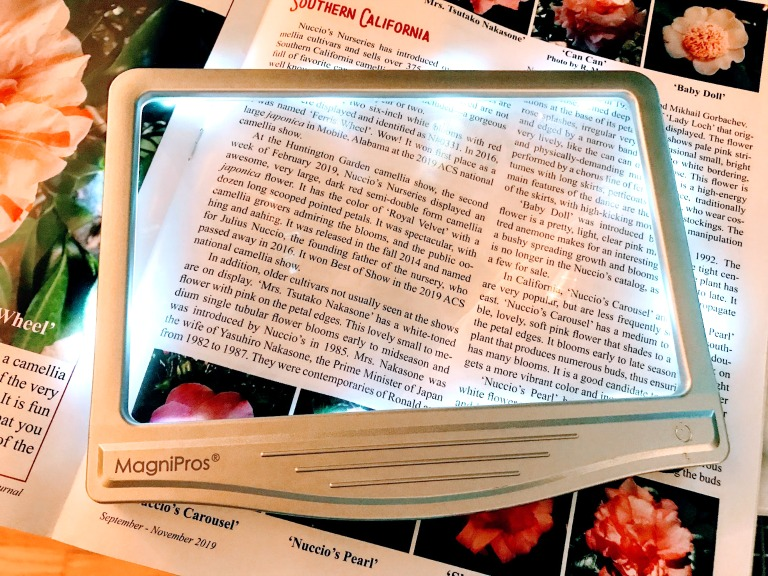 magnifier for reading